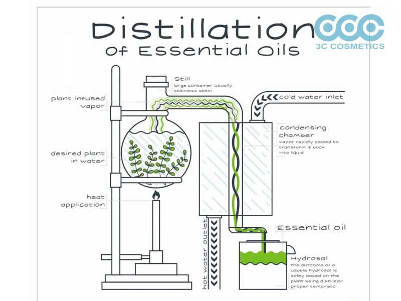 phương pháp chưng cách tinh dầu