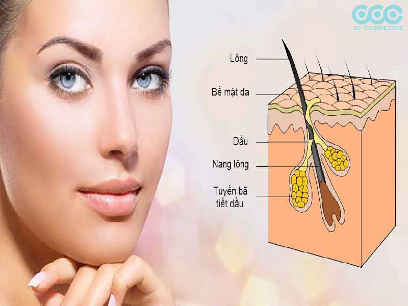 khắc phục lỗ chân lông to bằng cách trang điểm che phủ lỗ chân lông