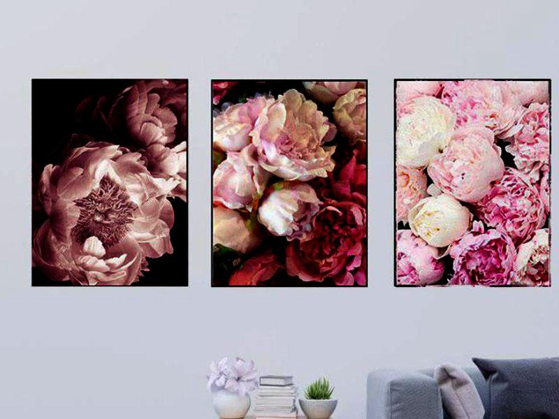 hình ảnh hoa hồng spa đẹp