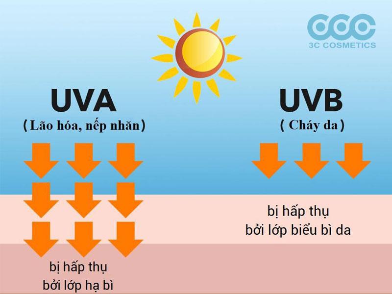 Bảo vệ da khỏi tia UVA và UVB