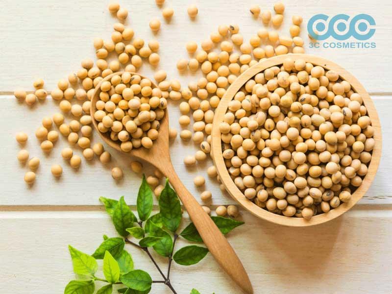 hạt đậu nành