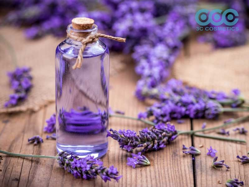 Tinh dầu oải hương (Lavender Pure Essential Oil)