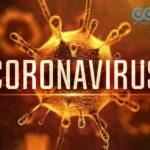 Hiểu đúng về virus corona - Cách phòng chống kịp thời