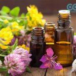 7 loại tinh dầu có tính diệt khuẩn khử trùng cực tốt
