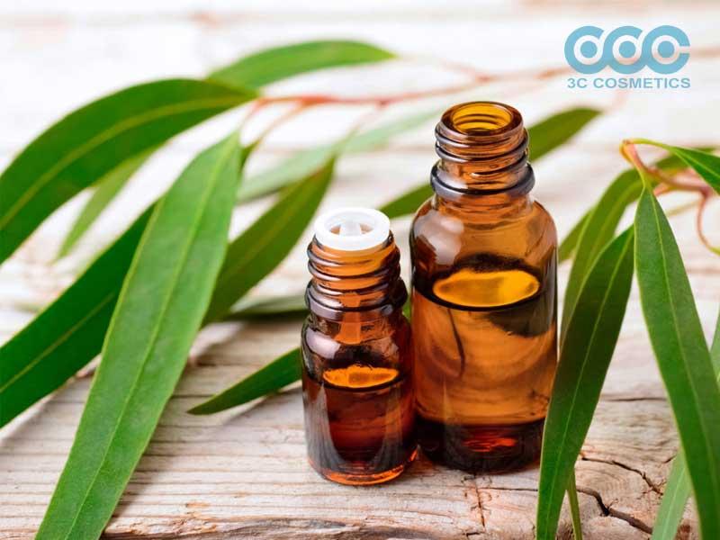 Tinh dầu khuynh diệp (hay tinh dầu bạch đàn) (Eucalyptus Oil)
