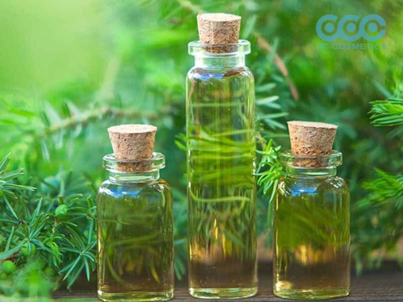 Tinh dầu tràm trà (Tea Tree Oil)